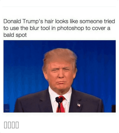 Donald Trumps Hair Looks Like Someone Tried To Use The Blur Tool In Photoshop To Cover A Bald Spot Donald Trump Funny Memes