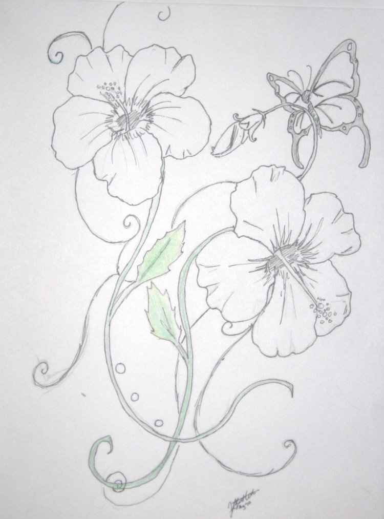 Fabulous Hibiscus Flower n Butterfly Tattoo Design For Girls