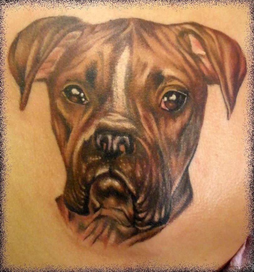 Fantastic Sad Dog Tattoo Design For Boys