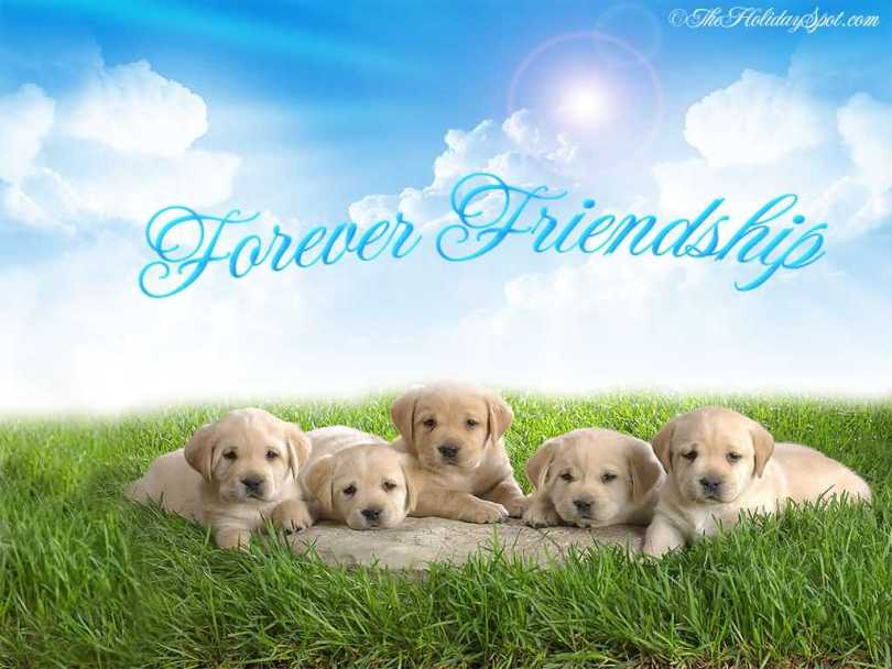 Friends Forever Happy Friendship Day Wishes