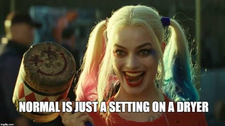 Harley Quinn Memes Normal Is Just A Setting On A Dryer