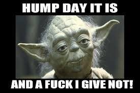 Hump Day It Is And A Fuck I Give Not Meme Image