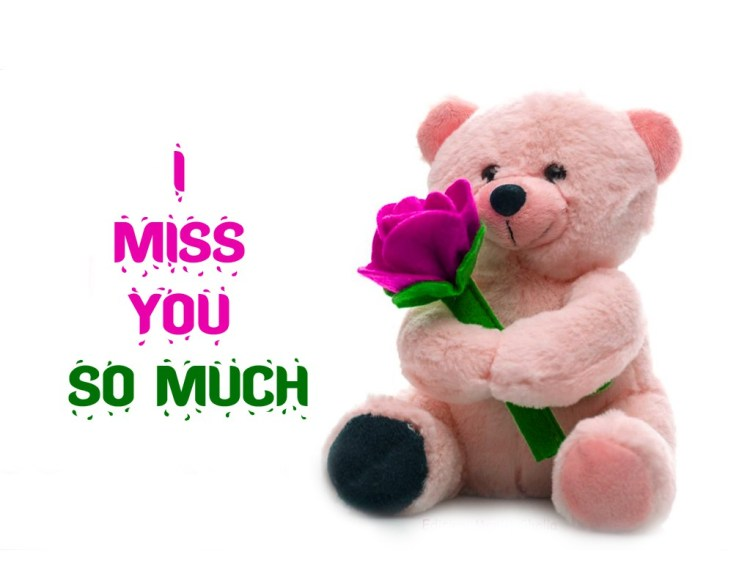 I Miss You So Much happy Teddy Day Wishes Image