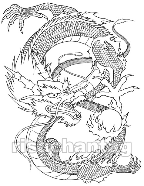 Marvelous Chinese Dragon Tattoo Sketch For Girls
