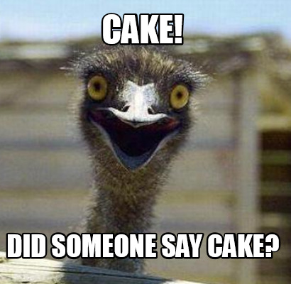 Meme Cake Did Someone Say Cake Graphic