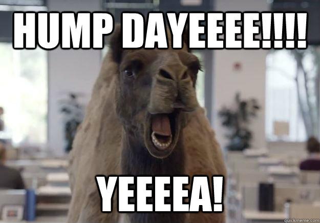 Meme Hump Day Yeee Graphic