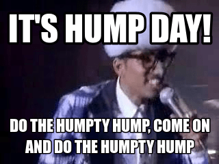 Meme Its Hump Day so The Humpy Hump Come On And Do The Humpty Hump Picture