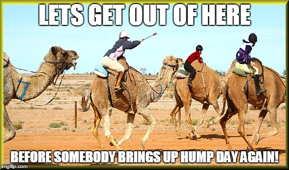 Meme Lets Get Out of Here Before Somebody Brings Up Hump Day again Picture