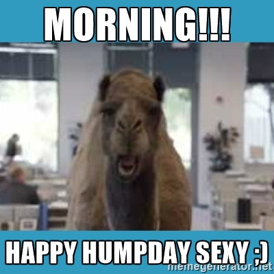 Morning Happy Hump Day Sexy Meme Picture
