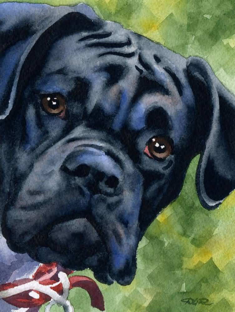 Most Beautiful Painting Of Black Boxer Dog Image For Wallpaper