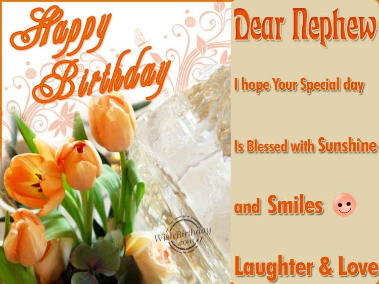 Nephew Quotes Dear Nephew I Hope Your Special Day Is Blessed With Sunshine And Smiles Laughter & Love