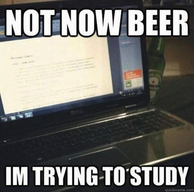 Not Now Beer I'm Trying To Study Funny Beer Meme