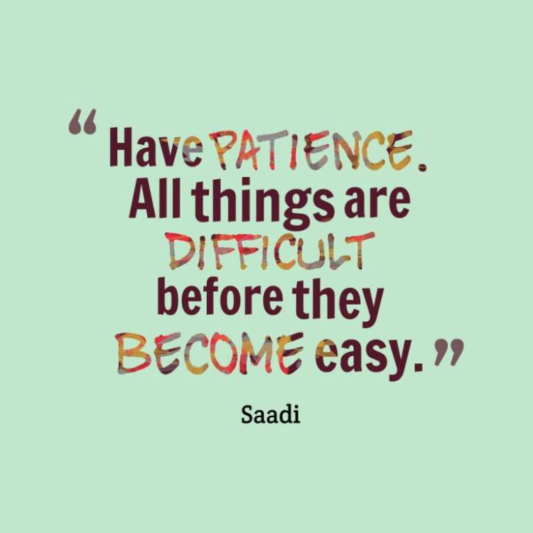 Patience Quotes have patience all things are difficult before they become easy