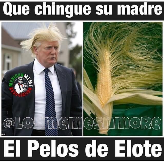 Que Chingue Su Madre Ei Pelos De Elote Donald Trump Meme