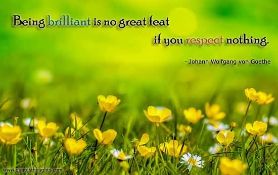 Respect Sayings being brilliant is no great feat if you respect nothing