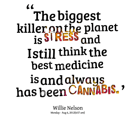 Stress Quotes the biggest killer on the planet is stress and in still think the best medicine is and always has been cannabis.