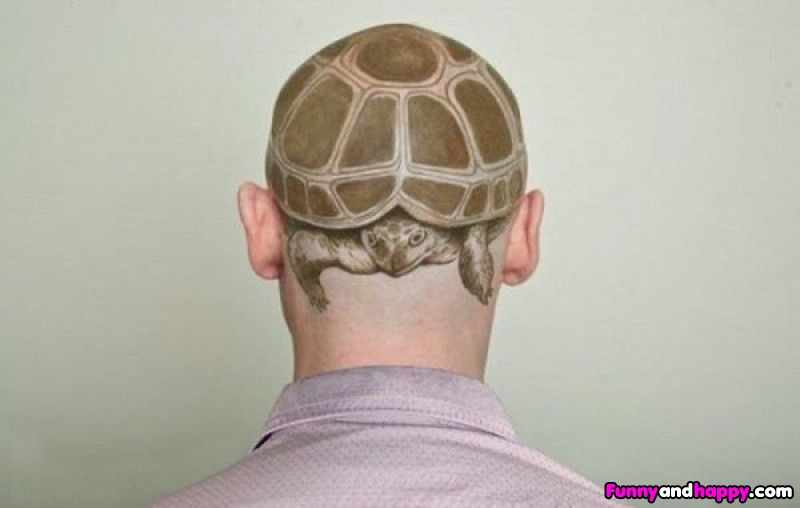 Trendy Funny Tortoise Tattoo On Head For Boys