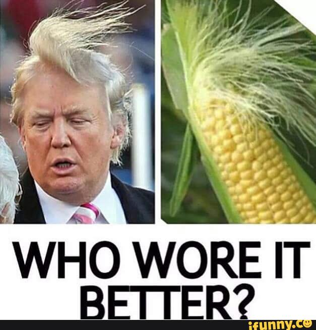 Who Wore It Better Donald Trump Funny Meme