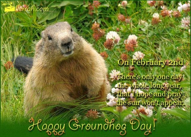 Wishing You Happy Groundhog Day Picture