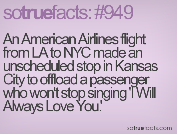 Dating sayings an American airlines flight from la to nice