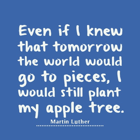 Determination Quotes even if i knew that tomorrow the world would go to pieces would still plant my apple tree