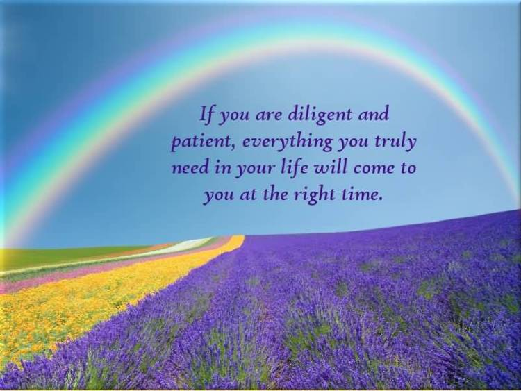 Determination sayings if you are diligent and patient everything