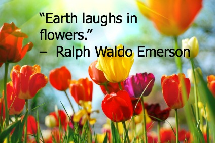 Earth Day Quotes earth laughs in flows
