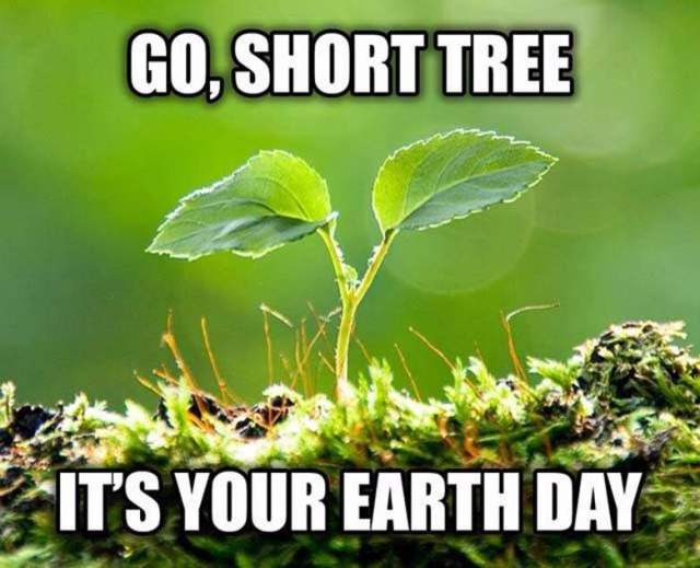 Earth Day Quotes go short tree it's your earth day