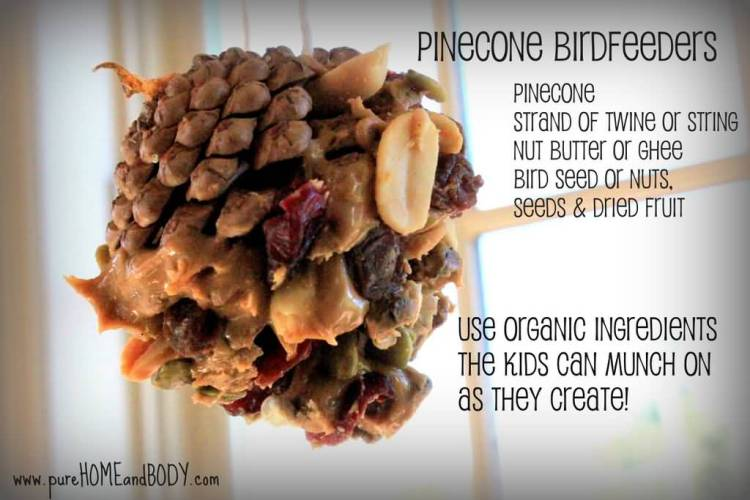 Earth Day Quotes pine birdfeeders pinecone strand