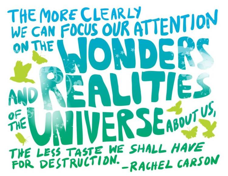Earth Day Quotes the more bleary we can focus our attention