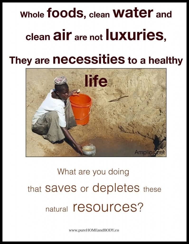 Earth Day Sayings whole foods clean water and clean air are not luxuries