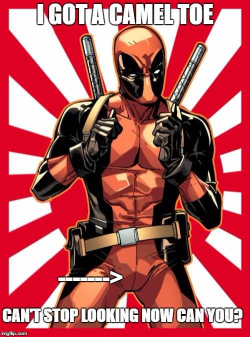 Funny Deadpool Memes I Got A Camel Toe Can't Stop Looking Now Can You