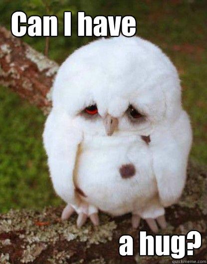 Funny Hug Meme Can i have a hug