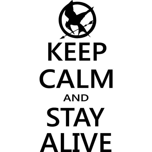 Games Quotes keep calm and stay alive