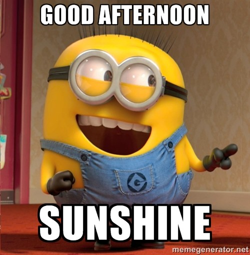 Good Afternoon Meme good afternoon sunshine