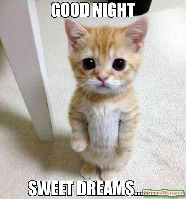 Good night sweet dreams Good Night Meme