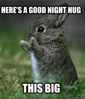Goodnight meme here's a good night hug this big