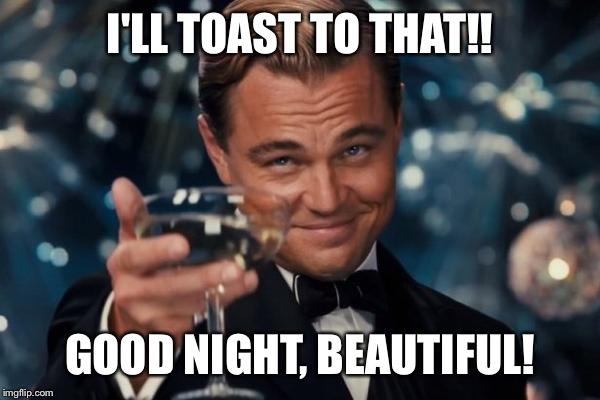 Goodnight meme ill toast to that good night beautiful