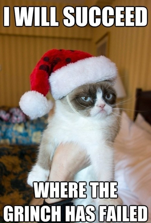 Grumpy Cat Memes I Will Succeed Where The Grinch