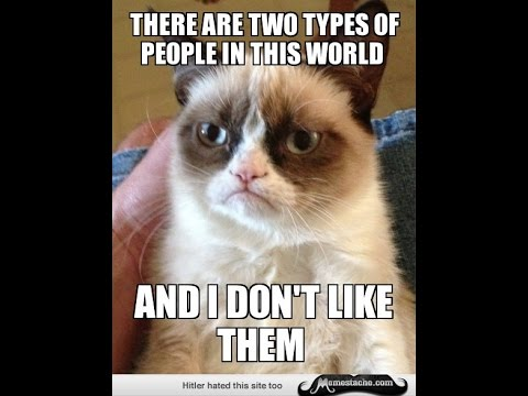 Grumpy Cat Memes There Are Two Types Of