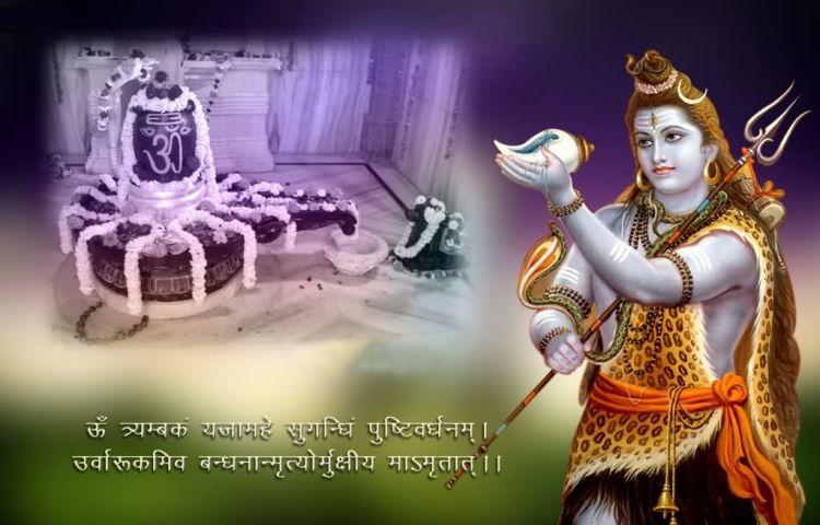 Happy Maha Shivratri 08