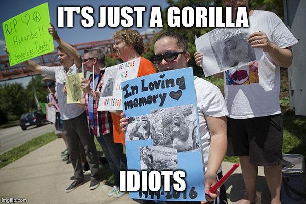Harambe Meme It's Just A Gorilla Idiots