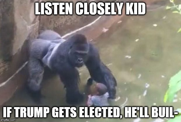 Harambe Meme Listen Closely Kid If Trump Gets Elected, He'll Buil