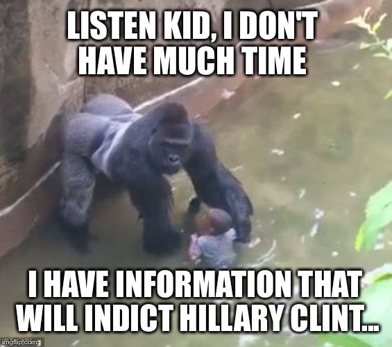 Harambe Memes Listen Kid, I Don't Have Much Time I Have Information That