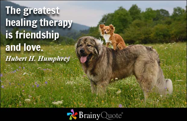 Healing Quotes the greatest healing therapy is friendship and love