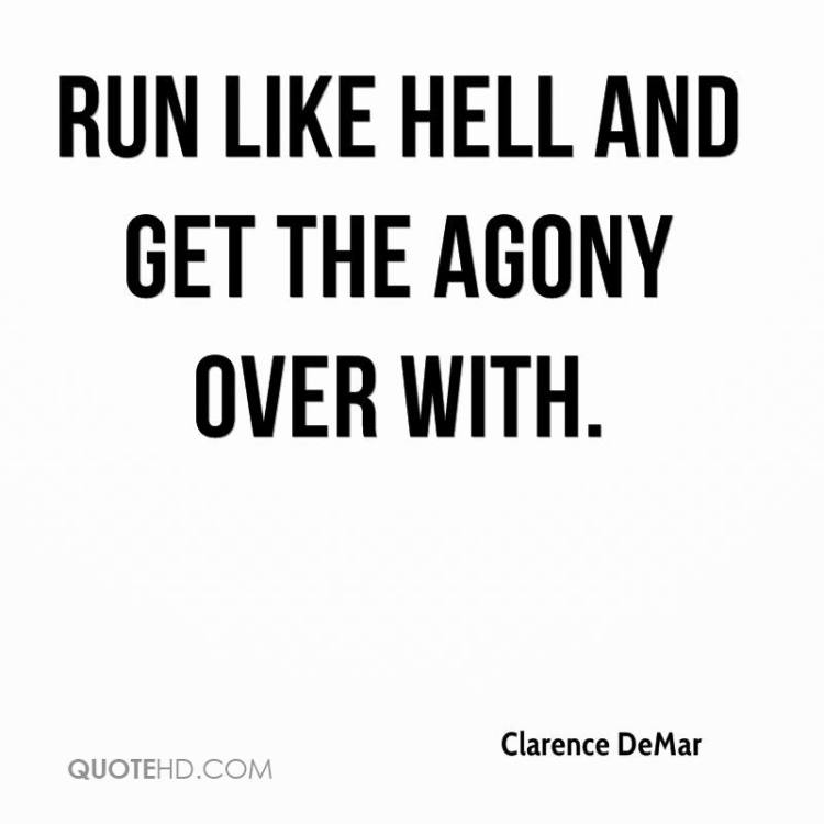 Hell Quotes run like hell and get the agony