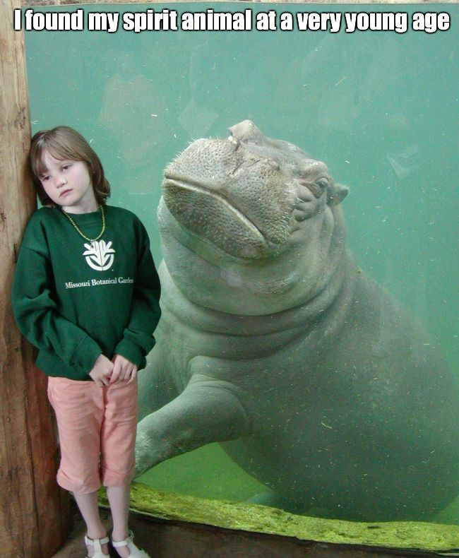 I found my spirit animal at a very young age Sad Memes