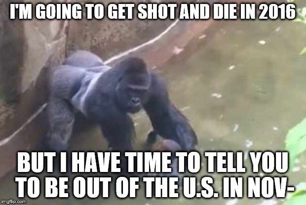 I'm Going To Get Shot And Die In 2016 Harambe Memes