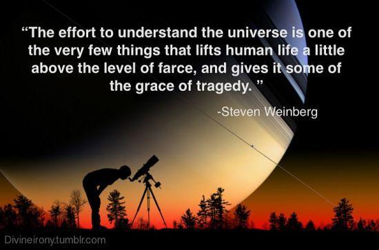 Interesting Quotes the effort to understand the universe is one the very few things that lifts human life