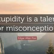 Misconception Quotes stupidity is a talent for misconception (2)